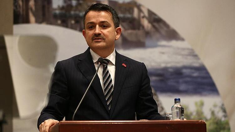 Pakdemirli: İzmir'de orman yangını kontrol altında, Kasım ayında dikim rekoru deneyeceğiz