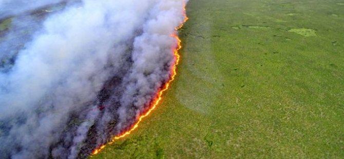 """Dünyanın ciğerleri yanarken Bolsonaro suçu çevrecilere attı: """"Yangınları çevreciler çıkarıyor olabilir"""""""