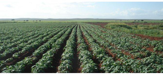 """""""Gen kaynakları, ülkemiz tarımı için oldukça büyük bir öneme sahip"""""""