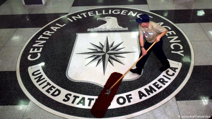 CIA casusluk için kedi, kuş ve yunus eğitti
