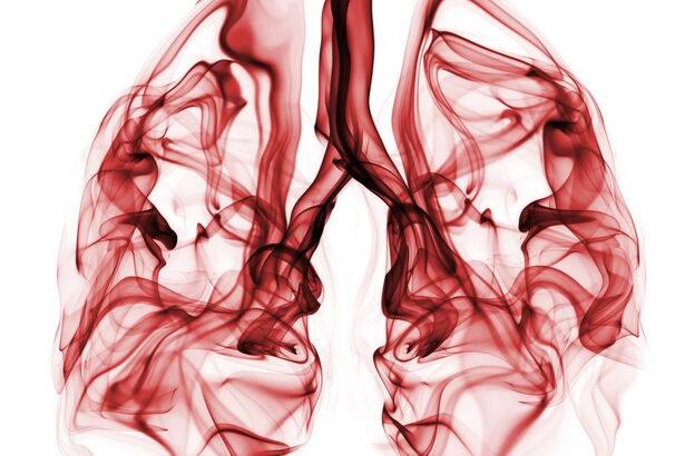 Profesör: Sigaradan kurtulduktan 20 dakika sonra kanser riski süratle azalmaya başlar