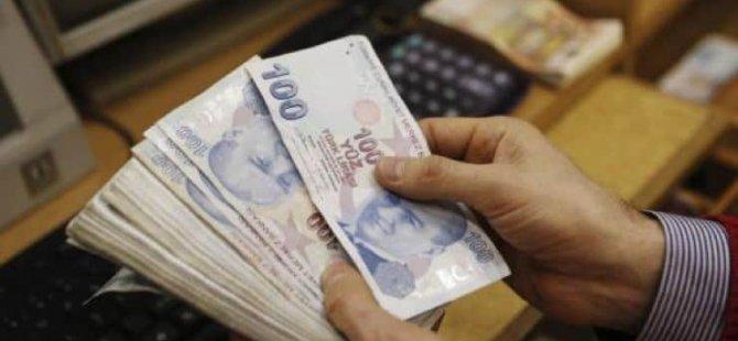 Balıkçılara 298 bin TL'lik 'balon balığı' ödemesi