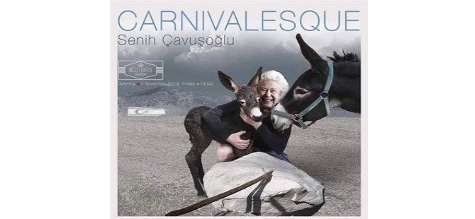 """Senih Çavuşoğlu'nun Dijital kolaj çalışmalarından oluşan """"Carnıvelasque"""" sergisi bugün açılıyor"""