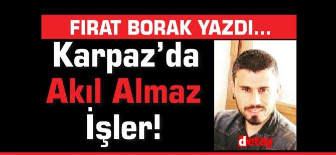 Fırat Borak Yazdı... Karpaz'da Akıl Almaz İşler!