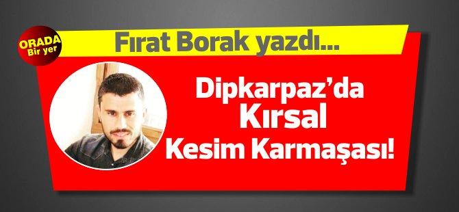 Fırat Borak yazdı... Dipkarpaz'da Kırsal Kesim Karmaşası