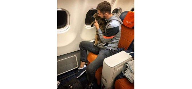 Tosun gibi olan  kedisini bagaj bölümüne vermemek için kontrol sırasında zayıf bir kediyle değiştirdi; milleri silindi