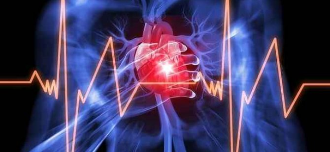 Kalp rahatsızlıklarını ortadan kaldıracak araştırmada ilk sonuçlar umut verdi