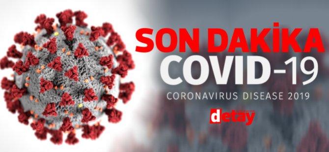 Sıcak hava koronavirüsü engelliyor mu?