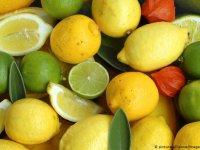 COVID-19 ile mücadele vitaminsiz olmuyor