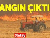 İskele'de Sınırüstü ve Aygün arasında yangın çıktı!