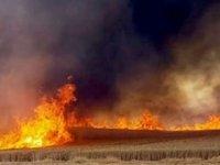 İskele Kalecik'te yangın