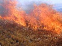 Lefke Aplıç'ta yangın çıktı, yangın Güney'e doğru ilerliyor