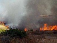 Alevkaya - Beyköy aasında yangın...30 Dönüm yandı