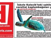 İskele Kalecik'teki sahile (Caretta caretta) kaplumbağaları yumurtladı