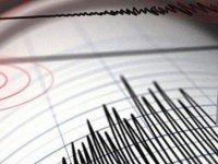 Bıtlıs'te 4,6 Büyüklüğündekı Deprem