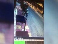 Mağusa'da Köpeğe Cinsel Saldırı!
