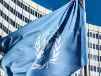 BM: Hayvanlardan insanlara bulaşan hastalıklar çevre ve vahşi yaşam korunmazsa artmaya devam edecek