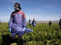 ABD'de koronavirüs vakaları 3 milyonu aştı