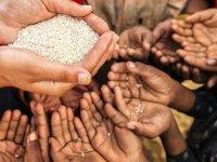 Oxfam: Salgın bağlantılı açlık krizi, Koronavirüs'ten daha fazla insanın ölümüne neden olabilir
