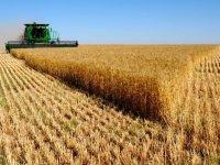 Çiftçiler Birliği: Üretirken batıyoruz