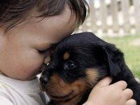 Köpekli ailede büyüyen çocuklar daha kolay sosyalleşiyor