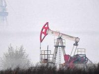 ABD'nin Petrol Sondaj Kulesi Sayısı Mart'tan Bu Yana İlk Kez Arttı