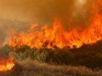 Limasol – Baf Sınırında Dün Çıkan Yangın Bu Yazın En Büyük Yangını…
