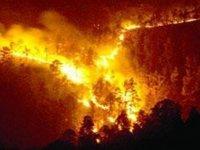Güney Kıbrıs Hafta Sonu Yangınlarla Boğuştu