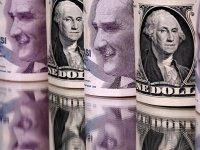 Prof. Steve Hanke: Dolar 8 TL'ye çıkacak