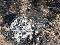 Tatlısu'daki Yangın Mangal Ateşinden Çıkmış