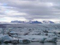 ABD, Kuzey Kutbu Ulusal Yaban Sığınağında Petrol ve Gaz Sondajına İzin Verdi