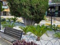 Girne Belediyesi Bellapais Manastırı ve Çevresinde Düzenleme Yaptı