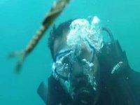 Van Gölü'nde yeni bir canlı türü görüntülendi