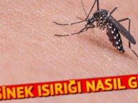 Sivrisinek ısırığına ne iyi gelir? Sivrisinek ısırığı nasıl geçer?