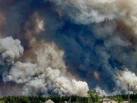 Ukrayna'nın doğusundaki orman yangınlarında 9 kişi öldü