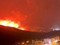 Hatay'daki yangın bölgesinde maden projesi yapılacağı ortaya çıktı!