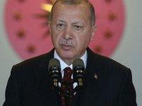 Cumhurbaşkanı Erdoğan, Wilders hakkında suç duyurusunda bulundu