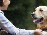 DNA araştırması, köpeklerin insanoğlunun en eski hayvan dostu olduğunu gösterdi