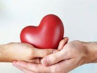 Organ Bağışında A'dan Z'ye Soru Ve Cevaplar