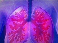 Akciğeri güçlendiren besinler!