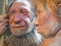 Neandertallerin çekici kolayca kavrayabileceği ama kalem tutmakta zorlanacağı ortaya çıktı