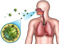 Üst Solunum Yolu Enfeksiyonları, Kalp Krizi Başta Olmak Üzere Kalp Hastalıklarını Tetikliyor