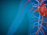 """""""Lupus Hastalığı Kalp Krizine Ve Ani Ölümlere Yol Açabilir"""""""