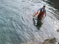Girne Belediyesi Antik Limanda Deniz İçinde Temizlik Çalışması Yaptı