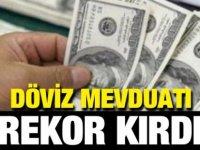 Türkiye'de Döviz mevduatı rekor kırdı