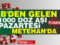 AB'den gelen aşılardan bin doz Pazartesi, Metehan'da teslim edilecek