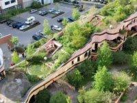 Enerji Tasarrufu ve Sürdürülebilirlik İçin Yeşil Bina ile Yeşil Çatı Uygulamaları Önem Kazanıyor...