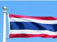 Tayland'da Bir Kişiye Kral'a Hakaretten 43 Yıl 6 Ay Hapis Cezası Verildi