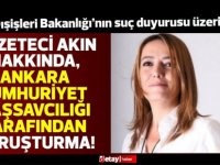 Gazeteci Ayşemden Akın hakkında Ankara Cumhuriyet Başsavcılığında soruşturma