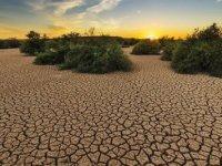 İklim Değişikliğiyle Mücadele Hedefleri Milyonlarca Hayat Kurtarabilir